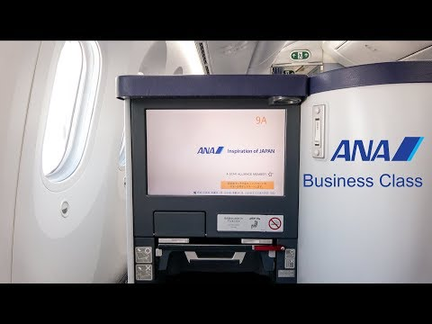 [4K] ANA 全日空 787 Business Class Experience | San Jose - Toky