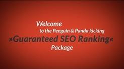 Guaranteed SEO Ranking | SEO | GUARANTEED 1st Page on Google! | Search Engine Optimization