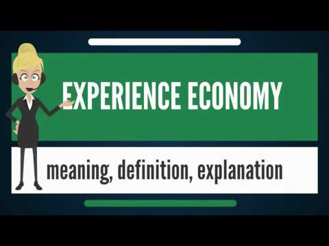 What is EXPERIENCE ECONOMY? What does EXPERIENCE ECONOMY mean? EXPERIENCE ECONOMY meaning