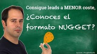 ¿Qué son los NUGGETS? - Consigue leads más baratos en Facebook Ads