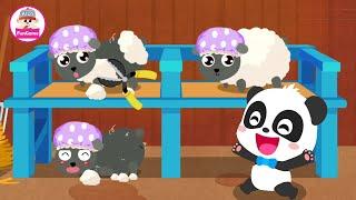 Trò Chơi Nông Trại Của Gấu Trúc Kiki #9 - Thu Hoạch Lông Cừu