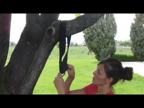 Using A Tree Swing Hanging Strap Option #1