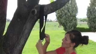 Using A Tree Swing Hanging Strap Option #1