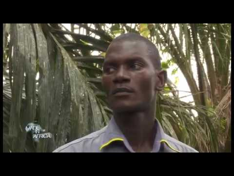 RTI   Made In Africa N°2   Agro industrie   Le défi de l'industrialisation   YouTube 360p