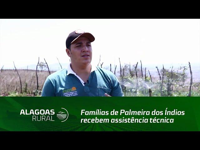 Famílias de Palmeira dos Índios recebem assistência técnica da Emater Alagoas
