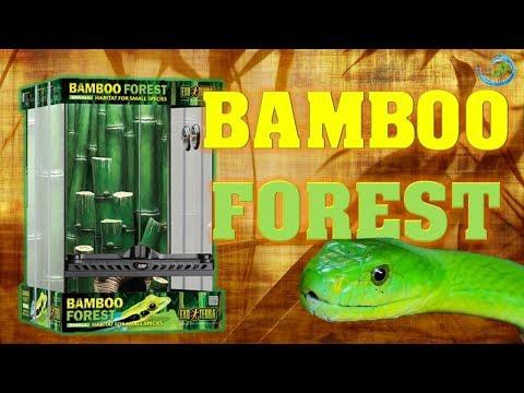 💢NEU! BAMBUSTERRARIUM mit ZUBEHÖR | ExoTerra Bamboo Forest Unboxing