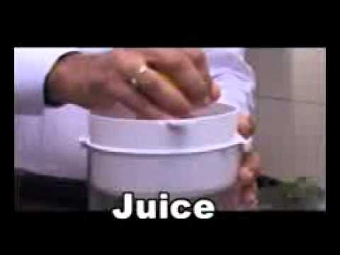 Life juicer green twin gear