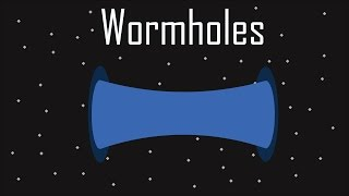 What Are Wormholes ?