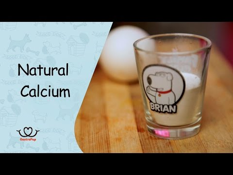 How To Make Natural Calcium  For Your Dog   Gastro Pup   Healthy Pet Treat