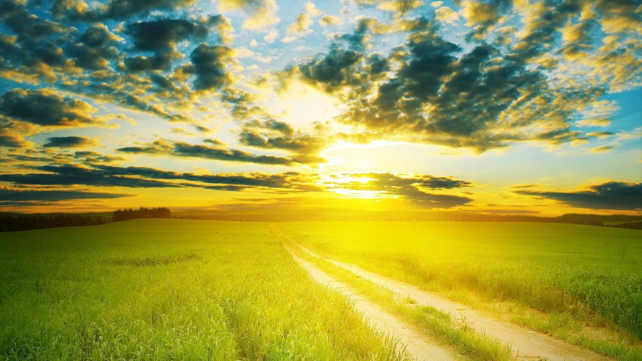 Nature Sunshine Galaxy S4 Wallpapers: Beautiful Earth