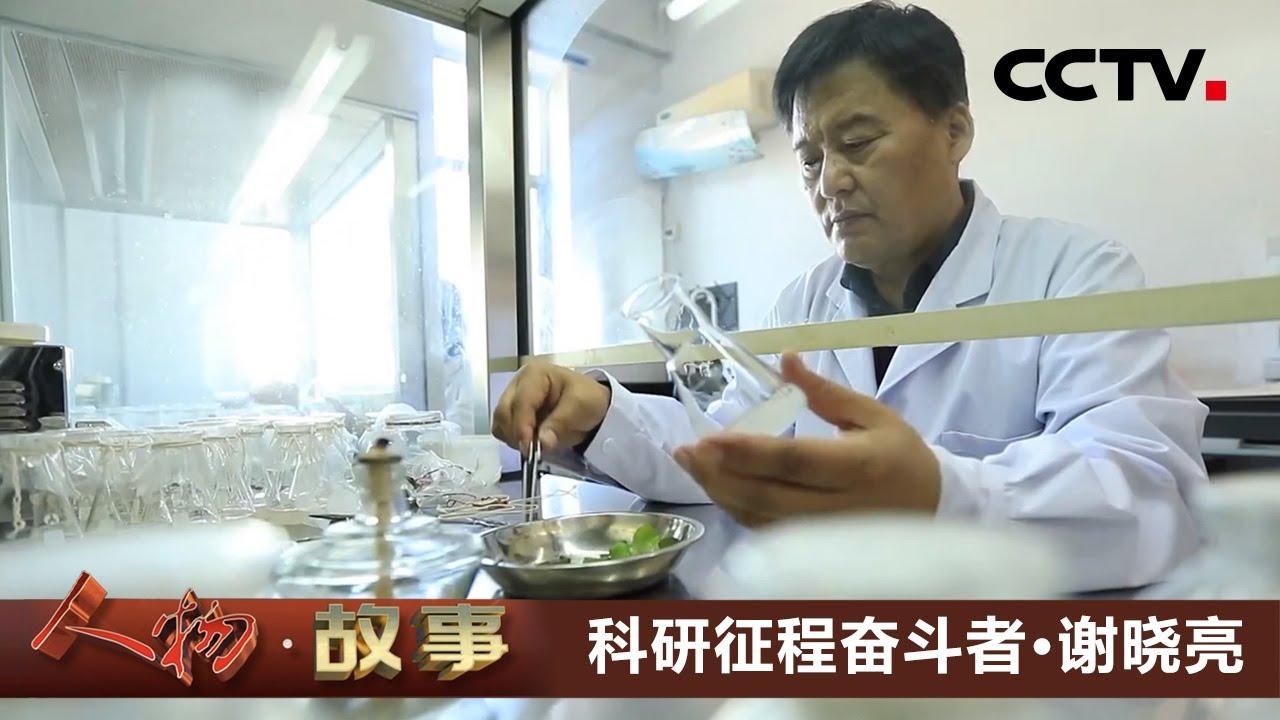 《人物·故事》 20210517 科研征程奋斗者·谢晓亮| CCTV科教