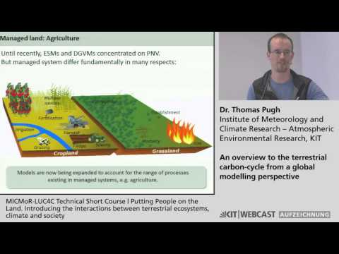 An overview to the terrestrial carbon-cycle from a global modelling perspective