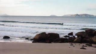CAMPEONATO WAIPIA O GROVE SURF PRO | VLOG 7