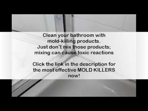 How To Get Rid Of Mold In Bathroom Walls