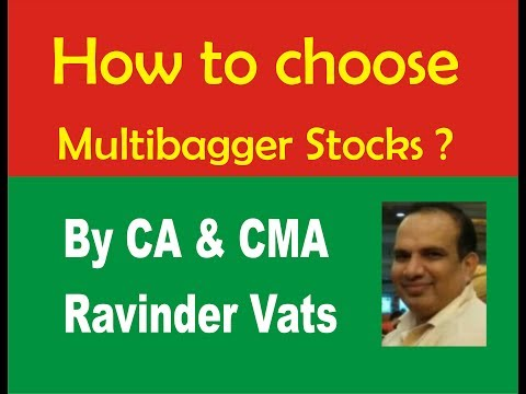 How to choose Multibagger Stocks ? -- Multibagger Stock Ideas