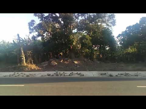 Candelaria Quezon Property For Sale along National Road