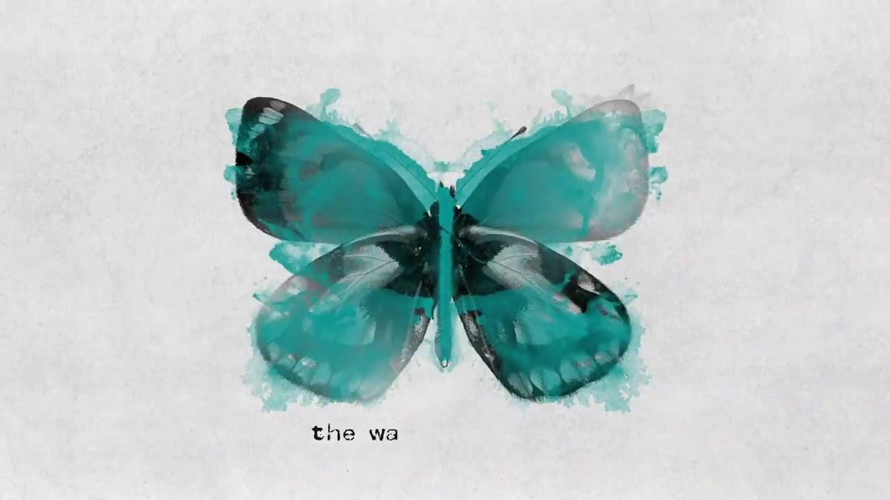 James TW - Butterflies (Official Lyric Video)