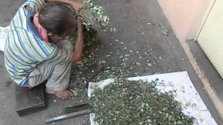 Adarsh Ayurvedic Pharmacy Machine & Plant