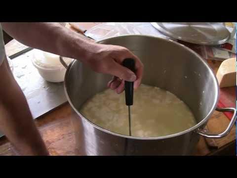 Делаем сыр из козьего молока