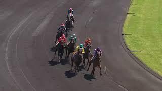 Vidéo de la course PMU PRIX DE CONCARNEAU