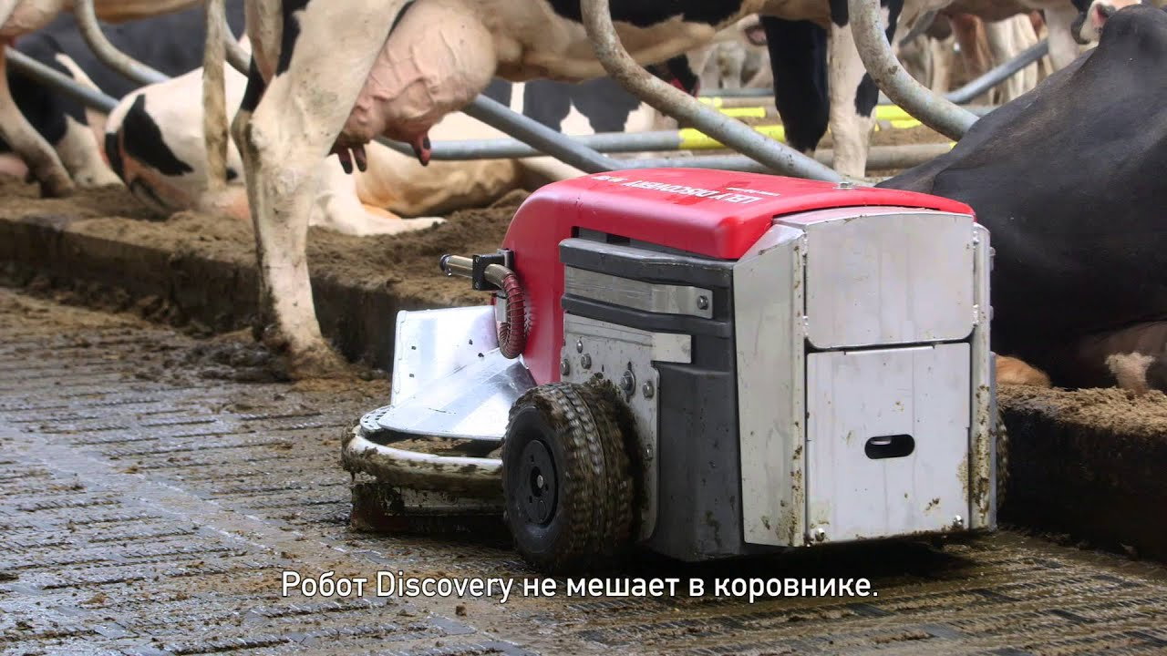 Lely Discovery 90SW - Testimonial Jack Nicolaes (RU/NL)