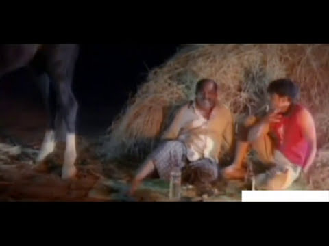 Ente Swarnam Malayalam Movie Full Hd Hot Movie Shakeela Reshma Super Hit Malayalam Movies