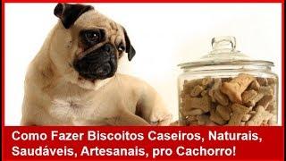 💲 ganhe dinheiro fazendo biscoito caseiro saudável para cachorro petisco para cachorro