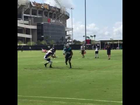 Allen Robinson vs Jalen ramsey training camp 2016
