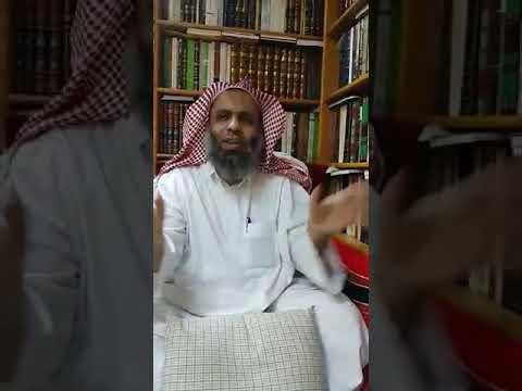 ملخص كتاب النبي لجبران خليل جبران pdf