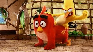 The Angry Birds Movie | Meet Chuck | Sony Pictures HD