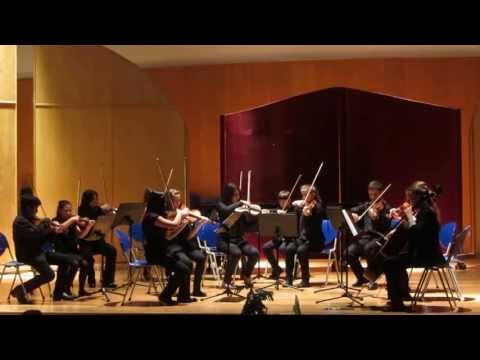The toreadors (Carmen) - G. Bizet.  Wood Effs Strings