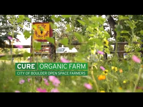 Cure Organic Farm - City of Boulder Open Space Farmers