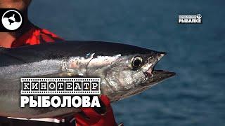 Рыболовное путешествие Австралия Часть 4 Кинотеатр рыболова