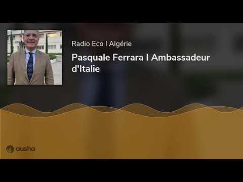 Radio ECO - Pasquale Ferrara I Ambassadeur d'Italie en Algérie - www.radioeco.net