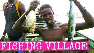 Tanji fishmarket, Banjul and crocodiles - aka The Gambia Part I - 2015 FULL HD