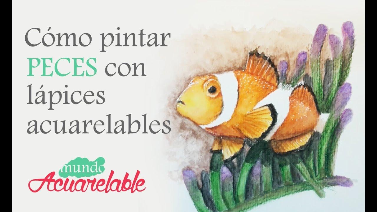 Cmo pintar peces con lpices acuarelables  YouTube