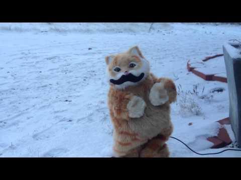 Tuvan throat singing cat