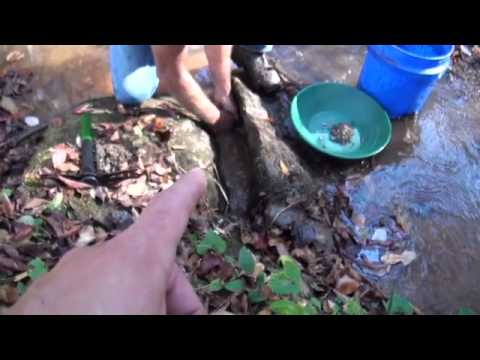 Gold Prospecting - Old Georgia Gold Mining Sites