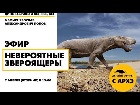 Вопрос: Древние земноводные, от кого произошли современные амфибии?
