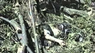 Первая чеченская На войне как на войне!!!