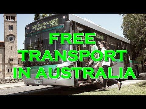 Free Transport In Perth, Australia - CAT Buses
