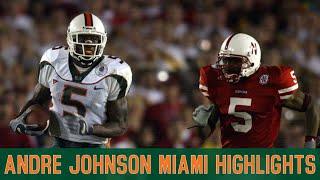 Andre Johnson Miami Highlights
