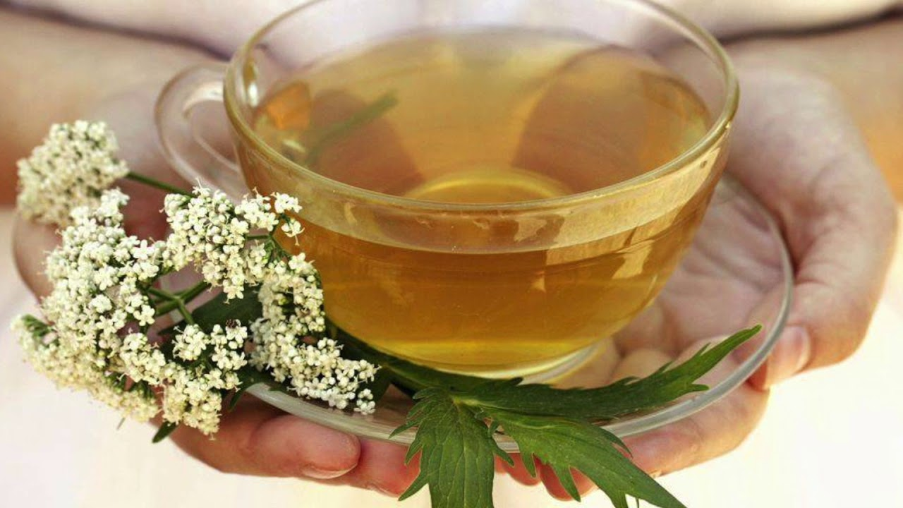 The power of herbal teas unleashed