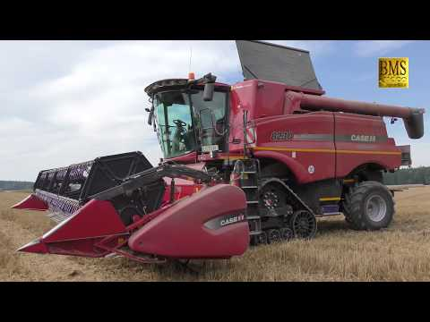 Mähdrescher Case 8230 IH Raupen - Axial-Flow - Weizenernte 2017 Combines Harvesting wheat