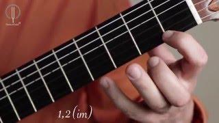 Уроки классической гитары. Элементы пассажной техники. Дмитрий Нилов