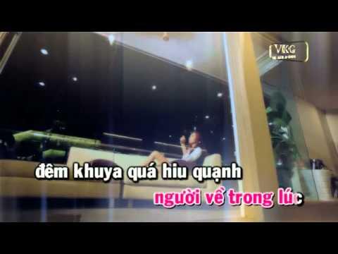 NGO TINH PHOI PHA - TRUONG Y VAN [KARAOKE DEMO]