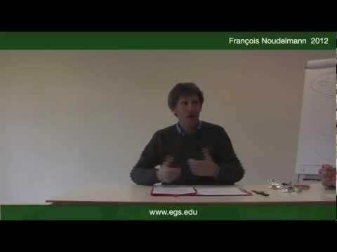 Francois Noudelmann. Affirmation and Denial. 2012
