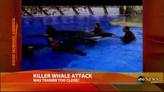Whale kills trainer - ABCnews.flv