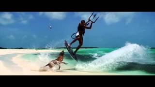 House of Virus - Summertime feat. SKAMP [Official Video]