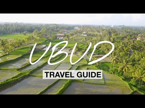 Ubud - What To Do In Ubud? | Bali Travel Guide